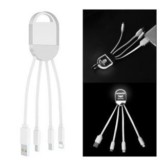 IT0572 3-in-1 USB Transparent LED Logo Cable