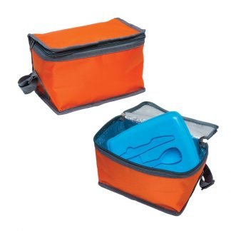 Cooler Bag and Multipurpose Pouch