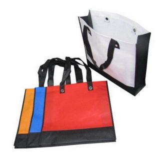 NWB0030 100gsm Non Woven Bag