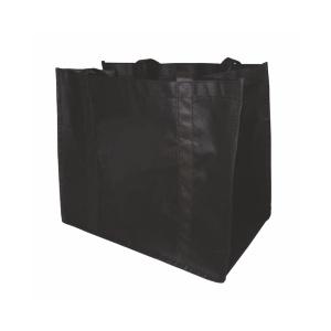 NWB0044 100 gsm Non-Woven Bag with PVC Base